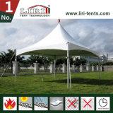 De Tent van Gazebo van de tuin voor de Viering van de Familie