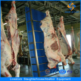 200 Cattles Abattoir Machine Cattle Slaughtering Equipment