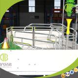 Gabbia agricola dell'animale di prezzi della strumentazione della strumentazione di azienda agricola del maiale