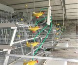 آليّة دجاجة قفص تجهيز لأنّ فرخة ودجاجة صغيرة (نوع إطار)