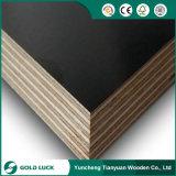 madeira compensada concreta marinha do molde de 9*1220*2440mm