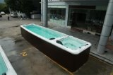Neuer 8.8 Meter-Form-Balboaim freienswim-Pool BADEKURORT M-3500 des Luxus-2017
