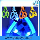 Produto recarregável barato do cão de animal de estimação do colar de cão do diodo emissor de luz da venda quente