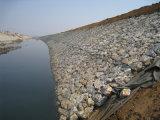 Cesta revestida galvanizada e do PVC Gabion