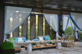 Insieme modulare Anti-Sbiadetto impermeabile del sofà di legno solido