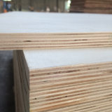 Madera contrachapada fenólica de la base del álamo para el embalaje de los muebles de la paleta (21X1220X2440m m)