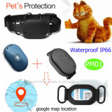Resistente al agua IP66 Mini GPS Tracker de Pet con Key Pendant PM01