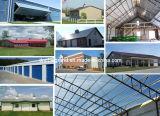 Edificio del parque industrial de la estructura de acero (DG3-054)