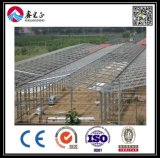 De Workshop van de Structuur van het Staal van het Ontwerp van de bouw (BYSS051601)
