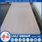 Contagem de madeira compensada de vidoeiro 18 milímetros com preço de atacado e excelente qualidade da China Factory