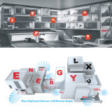 Indicatore luminoso di soffitto esterno Emergency del corpo di alluminio LED di E-L02e