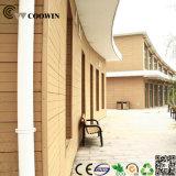중국 외부 현대 목제 벽면