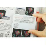 Magnifier plástico personalizado Hw-805A da cabeça da lente do tamanho Pocket do cartão de tamanho 6X
