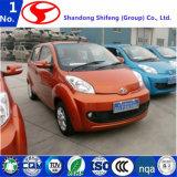 직업적인 디자인 중국 싼 가격 전기 차 또는 차량