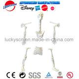 Игрушка скелета установленная пластичная для промотирования малыша