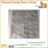 Encimera rosada del azulejo de suelo de Slabs& del granito de China Juparana y del granito de Colombo Juparana de las encimeras (YY-MS197)