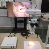 FDAの操作の顕微鏡のための公認のマイクロ3Dのビデオ録画システム