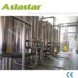 Sistema di trattamento di acqua automatico di osmosi d'inversione dell'acciaio inossidabile