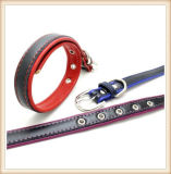 В два раза толще слоя кожи качества ПЭТ-Dog кольца Leashes (KC0139)