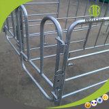 Schwangerschaft-Stall mit im Schwein-Bauernhof auf Verkauf