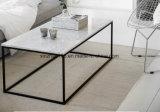 견본 커피용 탁자 현대 디자인 금속 테이블