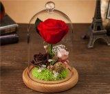 ユンナンの卸し売り水晶は復員軍人の日の間ローズの花のギフトを維持した