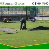 Os fios PE Campo Desportivo de relva artificial (MSPRO)