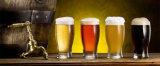 50L 100L 200L 300L de Micro- Apparatuur van het Bierbrouwen, de Lopende band van het Bier