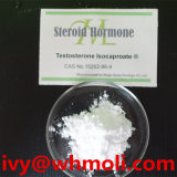 Testostérone stéroïde Isocaproate de poudre de construction de muscle de cycle de découpage