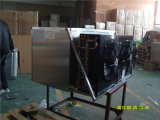 De Machine van het Ijs van de Kubus van de Machine van de Maker van het Ijs van de Fabrikant van China