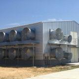 Дом цыпленка здания стопа Wsikind Компании одного стальная