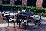 PC du classique 7 dinant les meubles réglés de jardin