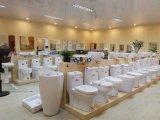 Toilettes en céramique de toilettes de cabinet monopièce compétitif de lavage à grande eau (8028)