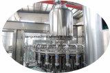 水処理の浄化装置が付いている完全な自動飲む浄化水満ちるライン