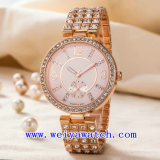 Acero inoxidable reloj ODM Señoras reloj de pulsera (WY-G17004B)