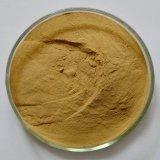Fabrik-Zubehör-Ingwer-Wurzel-Auszug Gingerols 5%