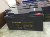 Gebildet in China-Hersteller-12V65ah gedichteter Leitungskabel-Säure-Batterie für Sonnenenergie-und Wind-Turbine-System