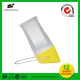 Lumière solaire portative de DEL avec la batterie LiFePO4