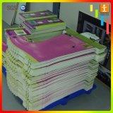 Panneau UV polychrome de mousse de PVC de Ptinting Lnk pour l'étalage
