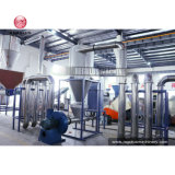 300-1000kg het plastic HDPE van de Fles LDPE en van pp Verpletteren van het Recycling van de Zak, het Wassen en Droge Installatie