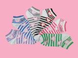 Оптовая торговля Китая женщина хлопок 3 штук Sock