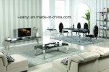 Tabella pranzante di marmo Tempered semplice o di vetro con i piedini dell'acciaio inossidabile