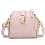 Borsa classica delle signore di sacchetto della spalla della signora Fashion Design con l'alta qualità