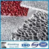 Piatti di alluminio della gomma piuma di disegno interno