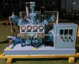 Bottiglia di riempimento dell'ossigeno Using il ripetitore ad alta pressione senza olio del compressore dell'ossigeno
