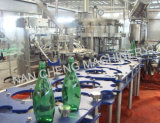 Matériel de mise en bouteilles de l'eau en verre automatique
