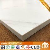 Carrara Blanco, 백색 광택이 없는 사기그릇 지면 및 벽 도와 (JR6549D)