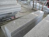 Мрамор гранита Sawing автомата для резки моста автоматический каменный (HQ600)