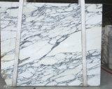 Het Italiaanse Witte Marmeren Marmer van de Decoratie van de Muur van de Tegel van de Bevloering van de Luxe Arabascata Marmeren