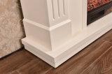 ホテルの家具のヒーターLEDはつけるセリウムによって承認される電気暖炉(343B)を